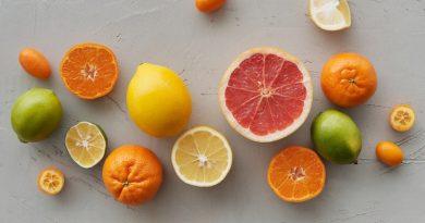essiccatore per frutta