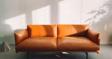 prodotto per pulire divano in pelle