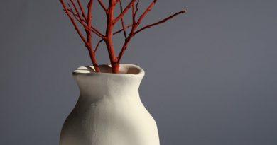 vasi eleganti per interni