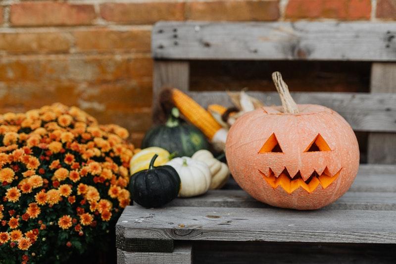 decorazioni Halloween giardino